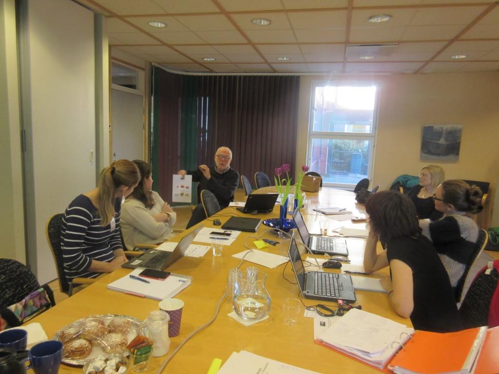 Los socios de Gymsen organizan los talleres del proyecto en Gotemburgo (Suecia)