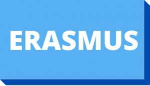 Botón ERASMUS estudiantes
