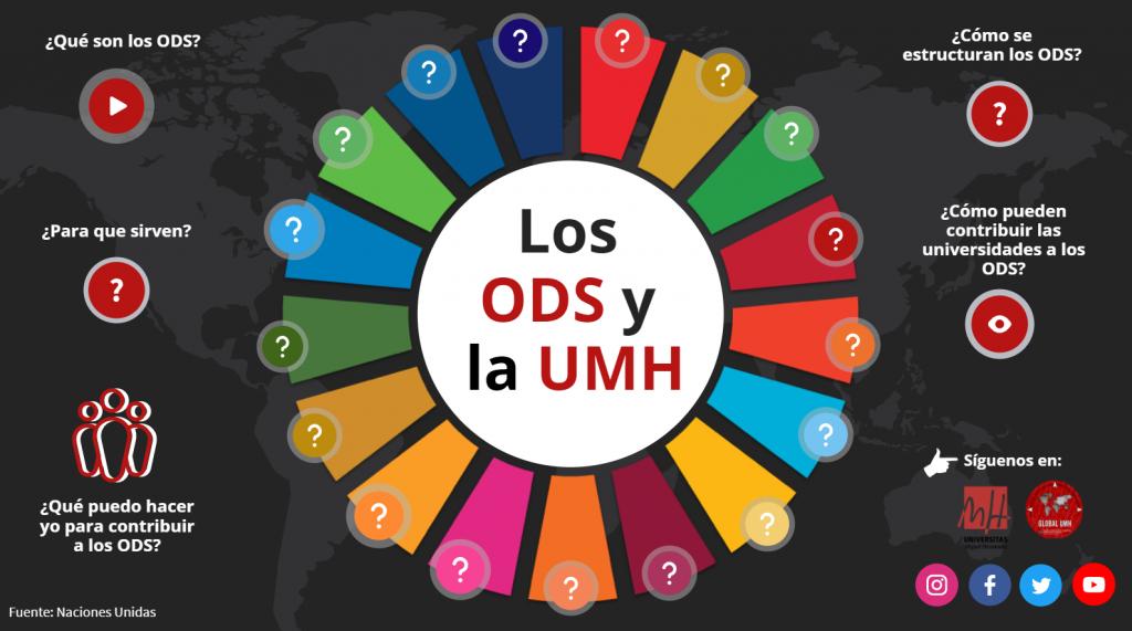 Infografía los ODS y la UMH