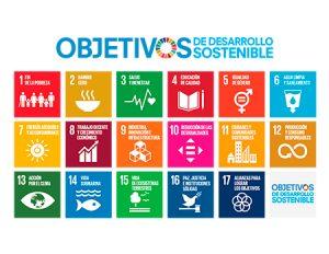 Iconos ODS diseño convocatoria ayudas UMH