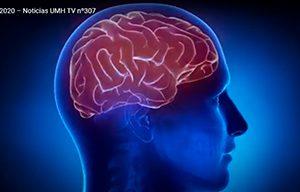 NeurotechEU UMH cerebro imagen